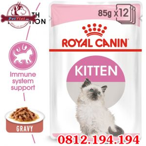 Pate cho Mèo con Royal Canin Kitten In Gravy