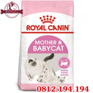 Royal Canin Mother and Baby Cat