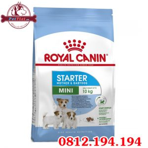 Royal Canin Mini Starter Mother and Baby Dog